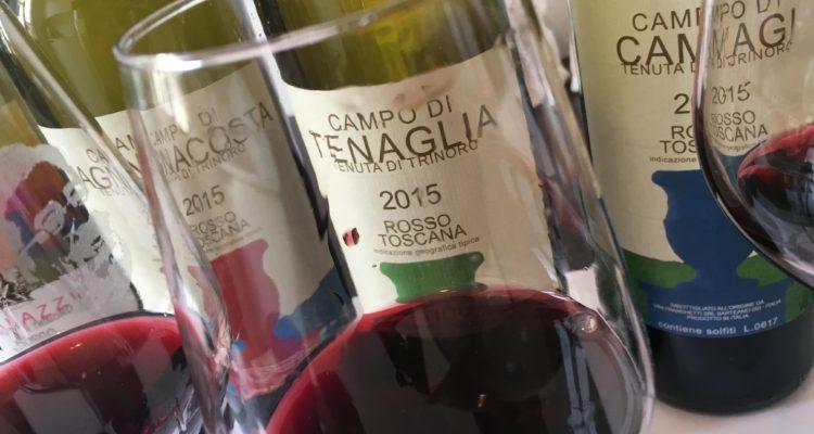 Tenuta di Trinoro, Andrea Franchetti sbanda per il cabernet franc: i tre cru del vitigno del momento