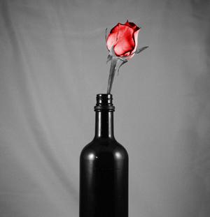 Bottle_And_Flower_BW_by_da_baka