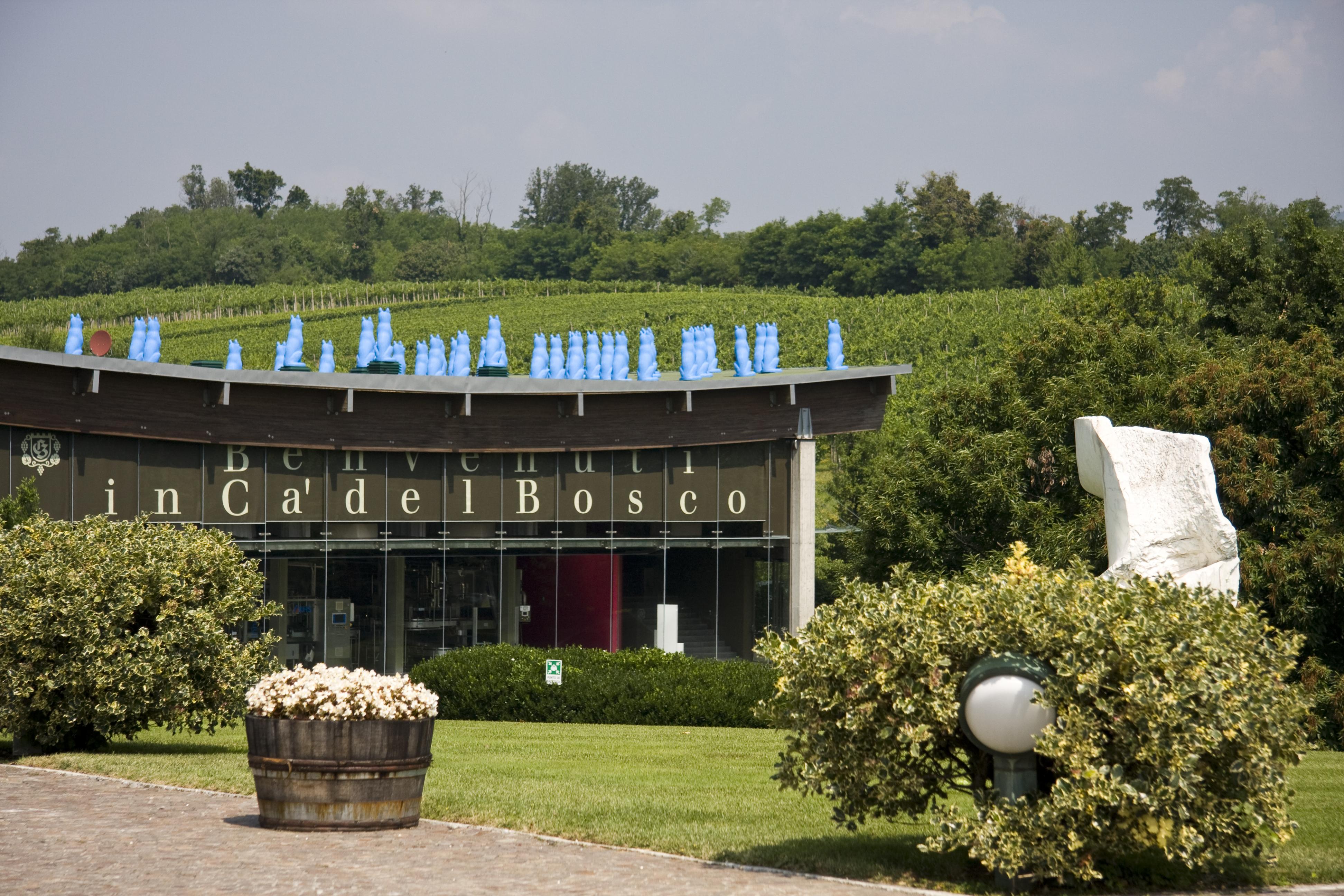 Visitare Ca' del Bosco, castigare alla cieca la Cuvée Prestige, assaggiare vini grandi davvero: fatto