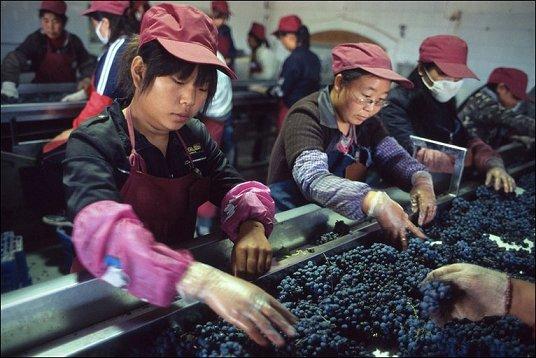 China wines 1