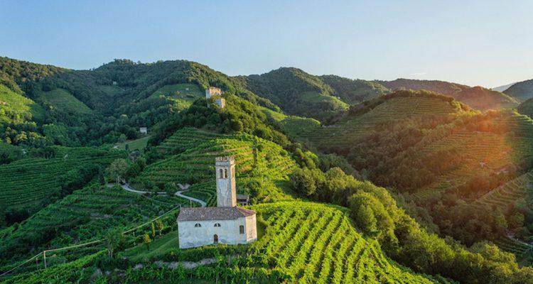 Vinitaly 2018, a proposito di viticoltura eroica