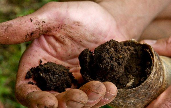 Il Post e l'agricoltura biodinamica. Cronaca di una storia che non abbiamo scritto, salvo ripensamenti