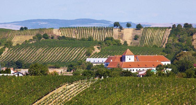 Repubblica Ceca, la Moravia Meridionale ha qualcosa da dire