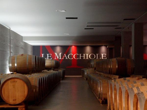 Le Macchiole | Bolgheri e i vini dell'espressività
