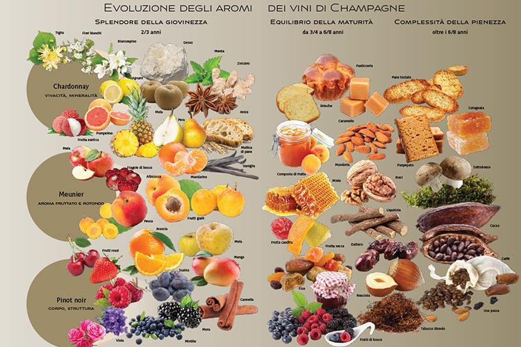 Evoluzione-degli-aromi-Champagne-degustazione