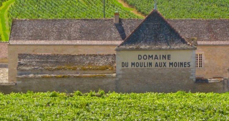 Gioiellini dalla Côte de Beaune: domaine Clos du Moulin aux Moines