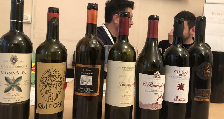 Antonio Boco e il sangiovese nelle Terre di Pisa DOC