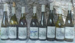 Vini Castel Juval