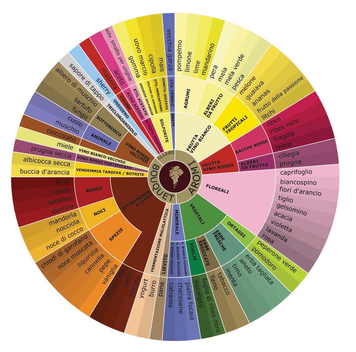 Ruota degli aromi del vino