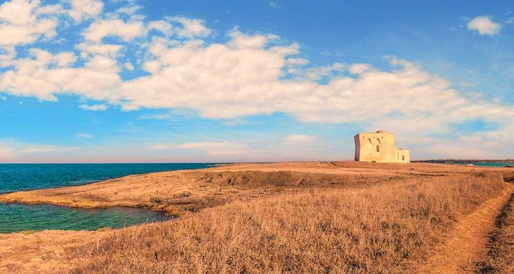 Negroamaro, una panoramica per affrontare al meglio l'estate