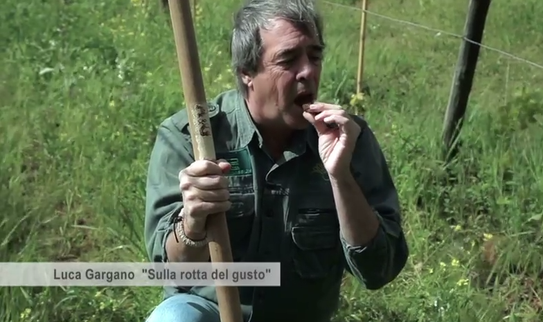 In questo video Luca Gargano mangia la terra biodinamica. E non è mica una battuta