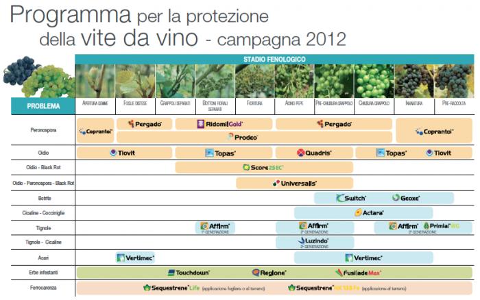 Calendario Dei Trattamenti Della Vite 2019.Calendario Dei Trattamenti Della Vite Calendario 2020