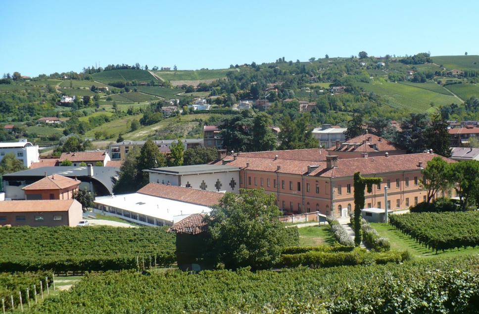 Il meglio della settimana e il fattore meno esplorato dei vini di Langa: la Scuola Enologica di Alba