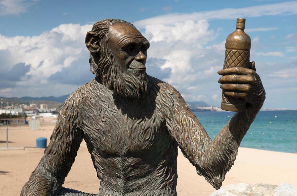 Anìs del Mono, il filo d'anice che unisce Darwin, Picasso e Donnie Brasco