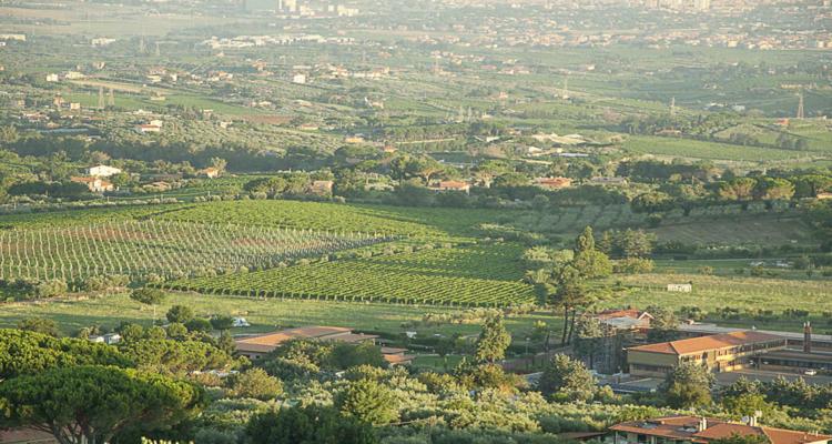 Palcoscenico Frascati, il meglio dei Castelli Romani