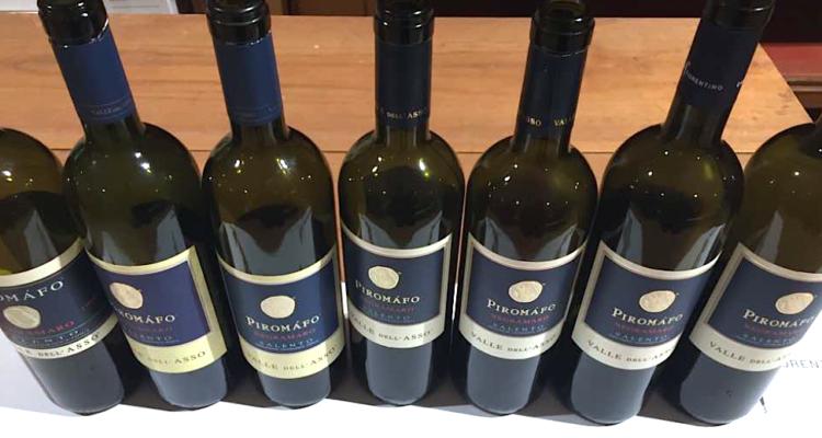 Verticale del Piromàfo di Valle dell'Asso, il vino più amato da don Gino