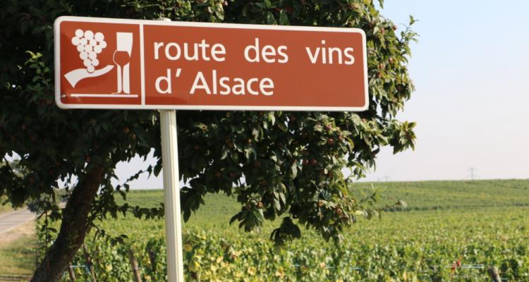 9 cartoline dalla Route des Vins d'Alsace
