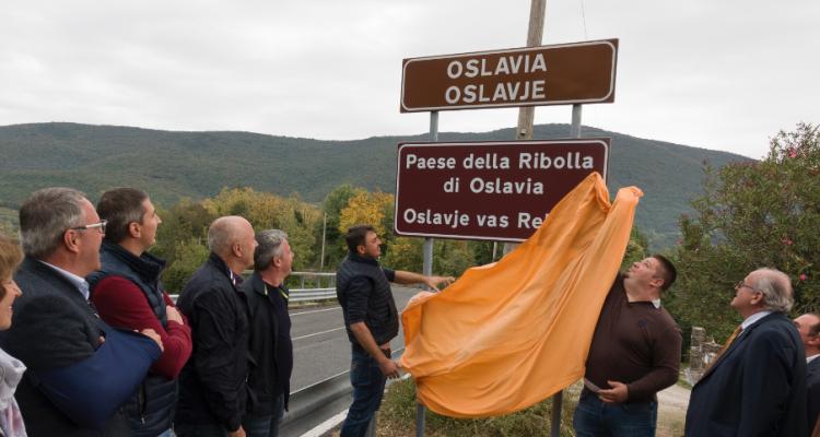 È arrivato il momento della Ribolla di Oslavia D.O.C.