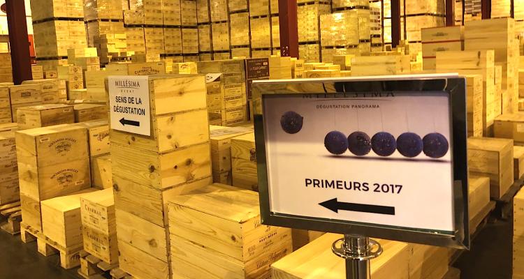 Bordeaux 2017 Rive Gauche: il miglior rapporto qualità prezzo del decennio e St. Estephe sul tetto del mondo