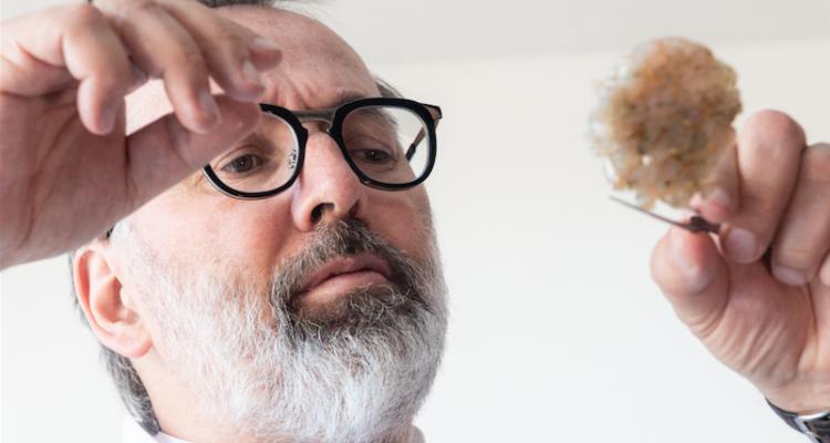 Care's 2019: intervista a Norbert Niederkofler, lo chef con la mente aperta al mondo