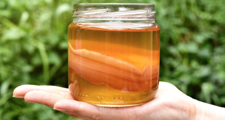 Cos'è la Kombucha e perché dovremmo berne a litri