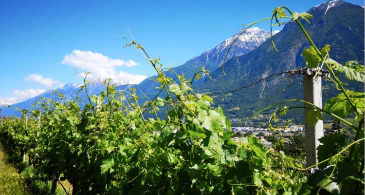 Il mare in Val d'Aosta di Elio Ottin