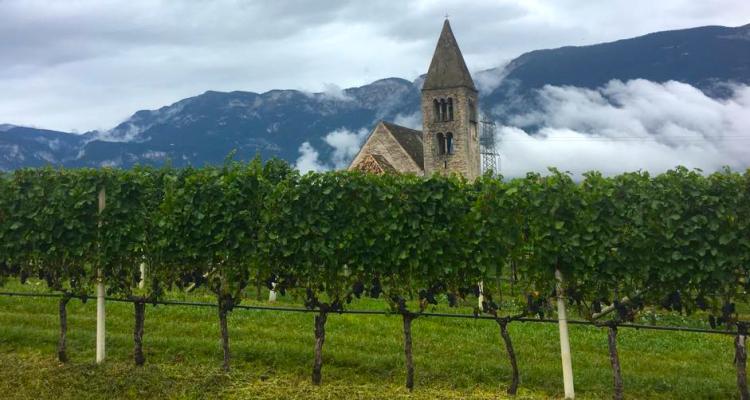 L'Alto Adige Wine Summit spiegato in breve