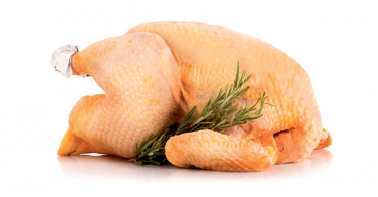 Il pollo a 4 zampe: che vino ci abbino?