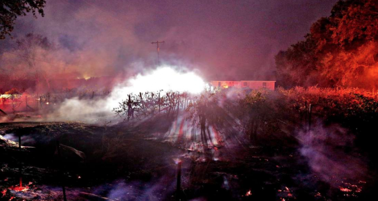 Sonoma in fiamme, distrutte o evacuate decine di cantine