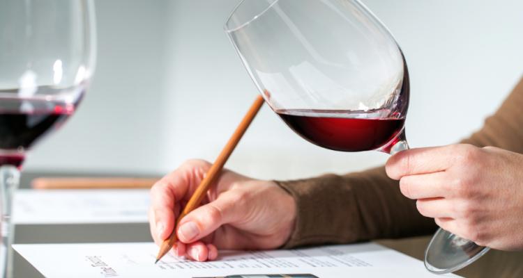 Intravino si fa domande: come si dovrebbe scrivere di vino?