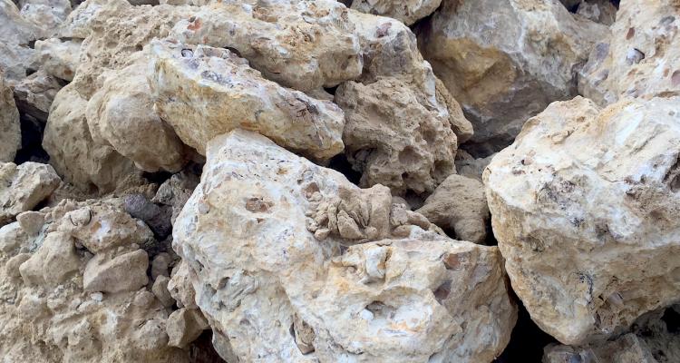 Sulla mineralità nel vino e altre gioie del marketing