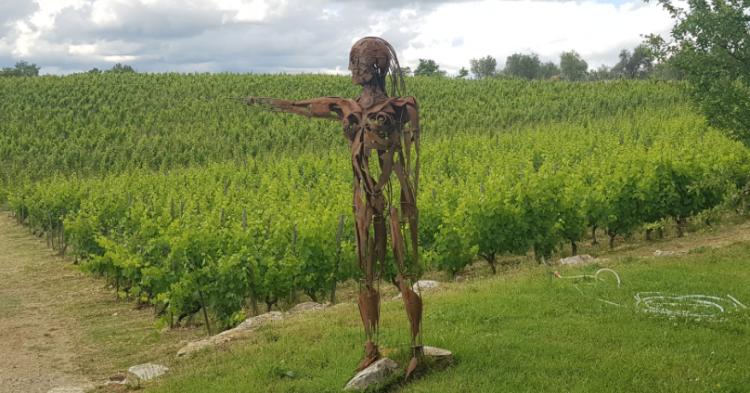 Il vino di Giovanna Morganti ha i superpoteri