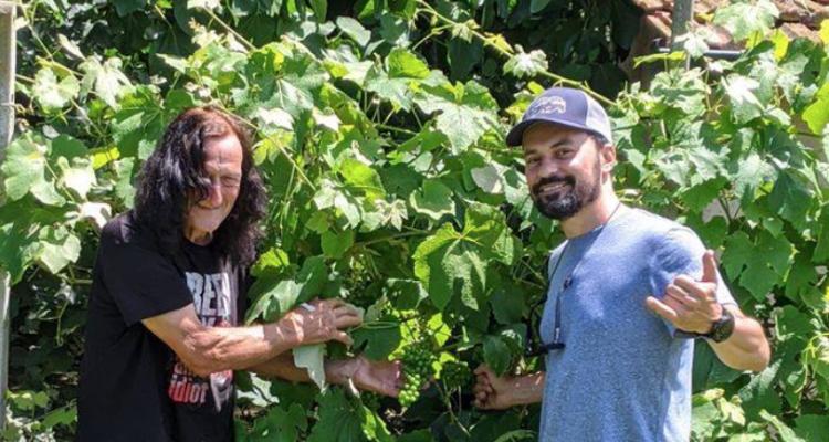 L'erbaluce della cascina rock: Costa di Sera dei Tabacchei