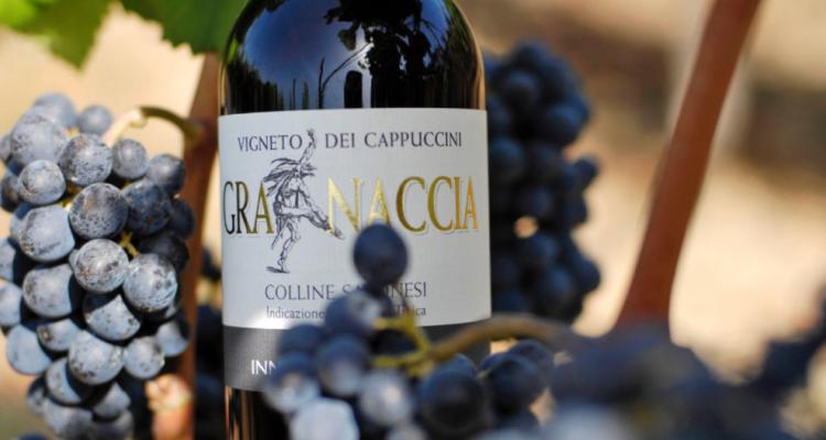 """Veronelli dixit: """"La granaccia di Quiliano è fra i migliori vini d'Italia e quindi del mondo"""""""