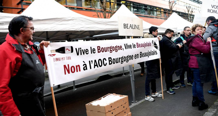 Il pinot noir approda in Beaujolais, è guerra