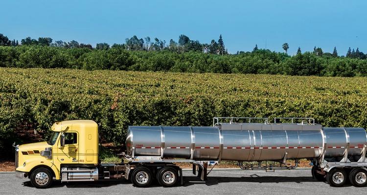 """Riscaldamento globale: bere vini del """"vecchio mondo"""" genera 4 volte meno co2"""