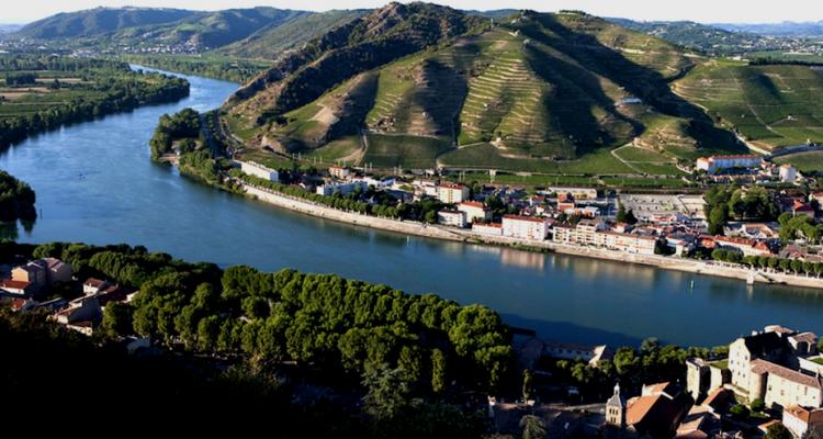 Rodano: guida breve ai migliori vini del mondo