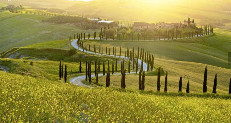 Anteprime Toscane: Chianti Classico Gran Selezione 2018 -2017-2016