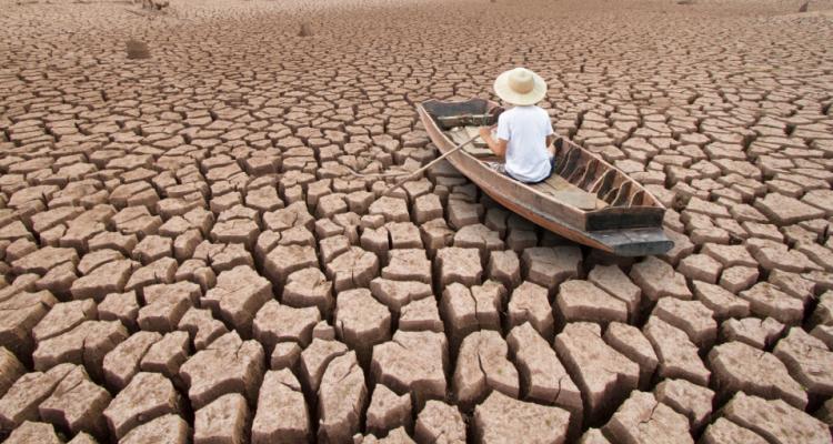 Il clima cambia l'agricoltura e la vite non fa eccezione