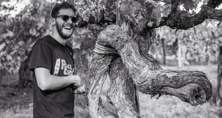 De Beaumont e la vite di 150 anni che non fa vino