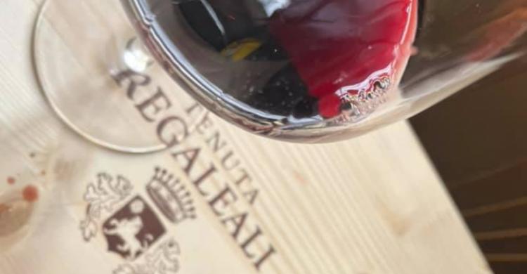 Regaleali, tutta la Sicilia dal perricone al cabernet sauvignon
