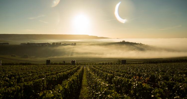Dom Pérignon 2012 e P2 2003, l'incubo e il sogno di ogni Champagne