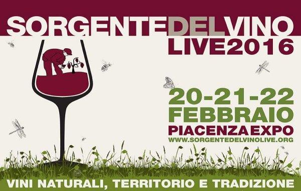 Wine blogger per caso a Piacenza. Sorgentedelvino Live 2016 vista da un infiltrato
