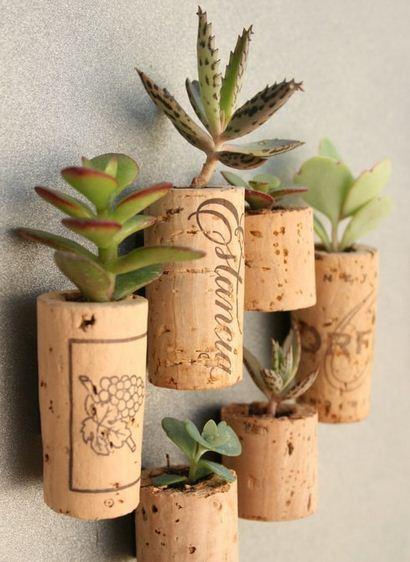 Idee tappi di sughero riciclati come mini vasi per piante for Vasi piante grasse