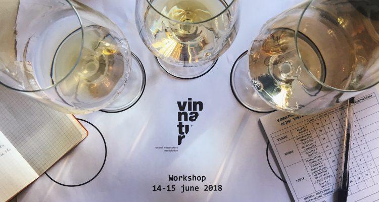 Il workshop di VinNatur sulla qualità dei suoi vini