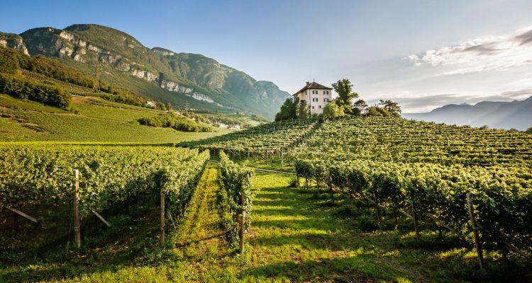 L'Alto Adige presenta la sua 2019: eleganza e fierezza da vendere