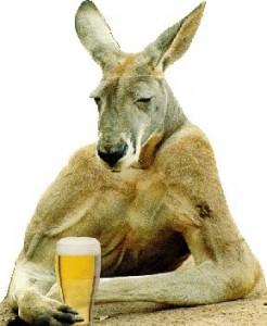 kang_beer