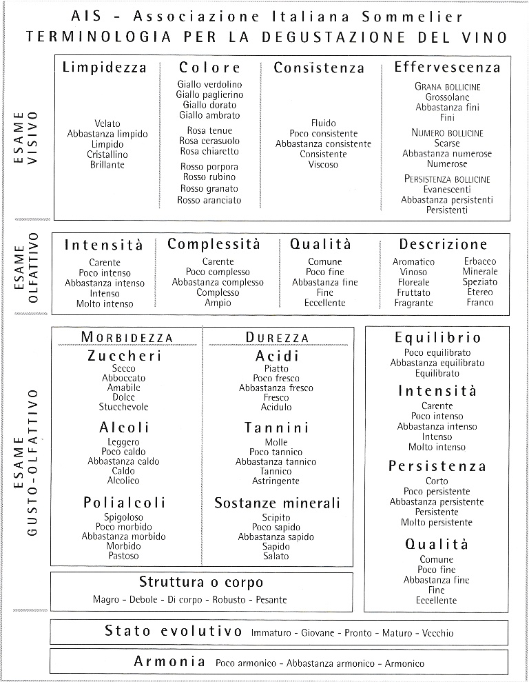 terminologiaais