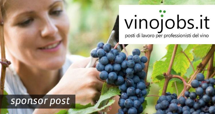 Vinojobs.it è il sito per chi cerca e offre lavoro nel mondo del vino. Scoprite tutti i dettagli