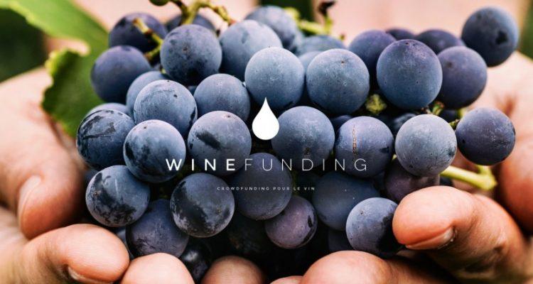 Il crowdfunding nel vino, funziona?